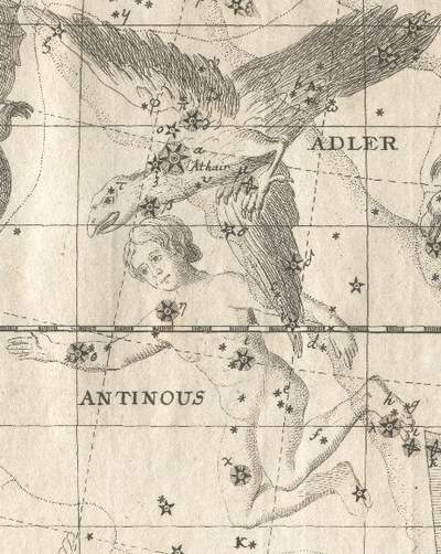 antinous star